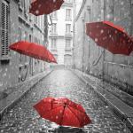 Фотообои с красными зонтиками
