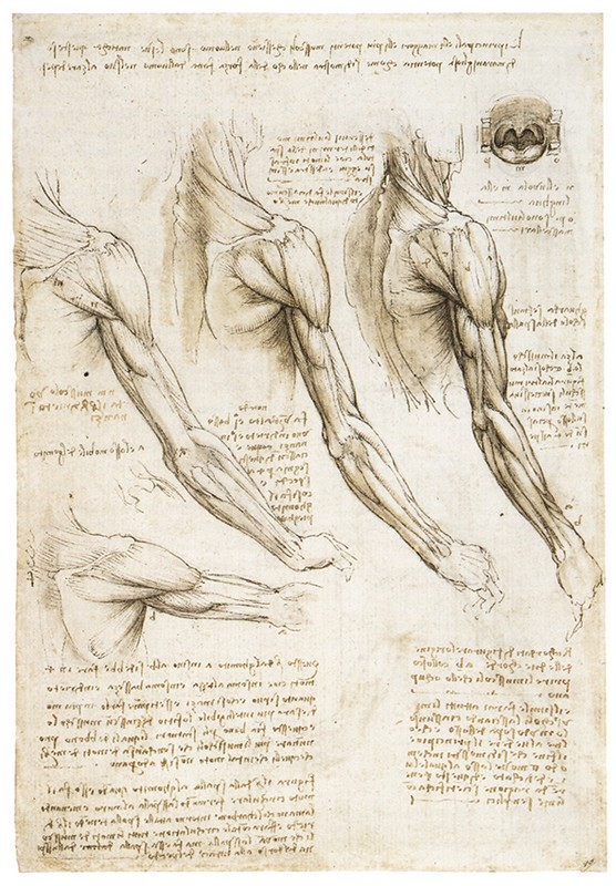 "a study of leonardo da vincis life and works The following excerpt is from giorgio vasari's ""life of leonardo da vinci,"" in lives the study of music, and learnt his life 3 how did leonardo come."