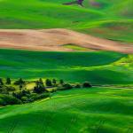 Ландшафт холст