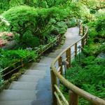 Фотообои Японский сад в Канаде