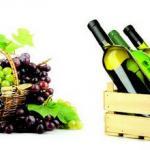 Вино 0214