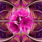 Розово-малиновые цветы № 0782