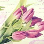 Тюльпаны № 0792