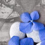 Сине-голубые цветы № 6575