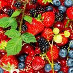 Цветы и фрукты холст 4
